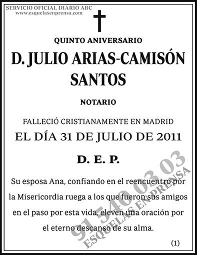 Julio Arias-Camisón Santos